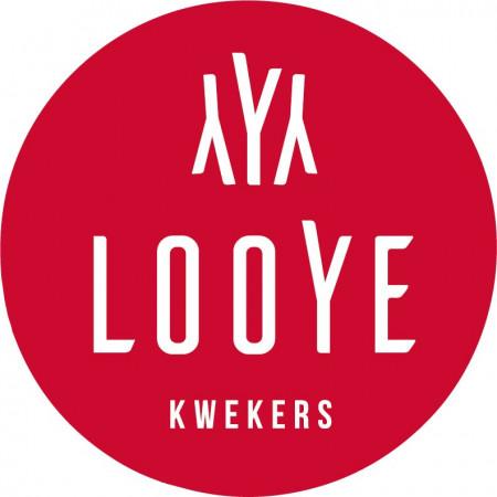 Looye Kwekers Holding B.V.